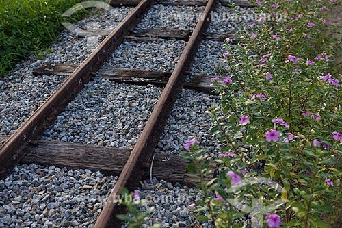 Assunto: Trilho de trem  / Local:  Sebastião de Lacerda - Distrito de Vassouras - Vale do Paraíba - Rio de Janeiro - RJ  / Data: 02/2011