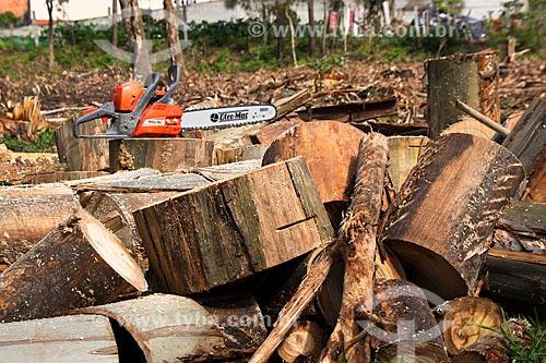 Assunto: Corte de madeira para aquecimento residencial / Local: Águeda - Portugal - Europa / Data: 03/2011