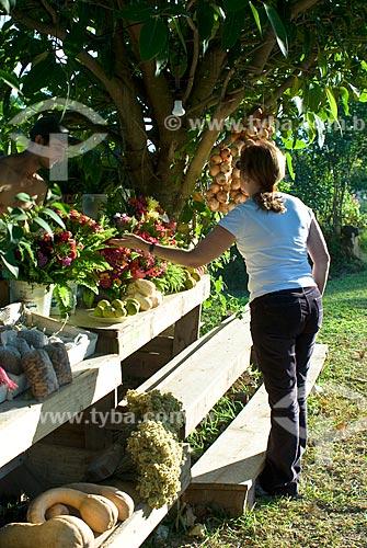 Assunto: Rota Romântica na BR 116 / Local: Morro Reuter - Rio Grande do Sul (RS) - Brasil / Data: 04/2009