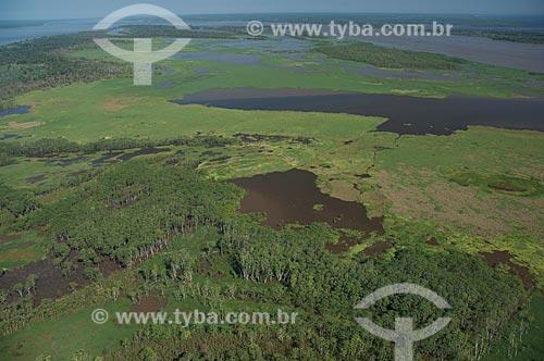 Assunto: Várzea do rio Amazonas perto do município de Careiro da Várzea  / Local: Careiro da Várzea - Amazonas (AM) - Brasil  / Data: 06/2007