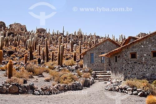 Assunto: Isla Incahuasi no meio do Salar de Uyuni / Local: Bolívia - América do Sul / Data: 01/2011