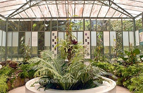 Assunto: Viveiro de plantas carnívoras no Jardim Botânico  / Local: Jardim Botânico - Rio de Janeiro (RJ) - Brasil / Data: 11/2010