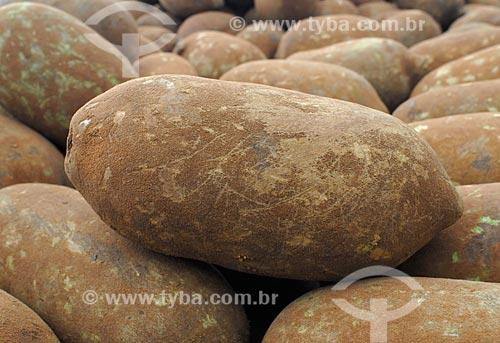 Assunto: Cupuaçú no Mercado Ver-o-peso / Local: Belém - Pará (PA) - Brasil / Data: 02/2008