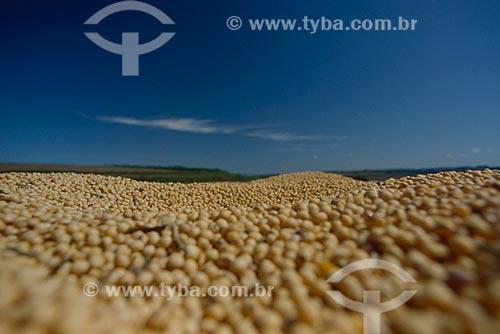 Assunto: Grãos de soja  / Local: Santo Angelo - Rio Grande do Sul (RS) - Brasil / Data: 2009
