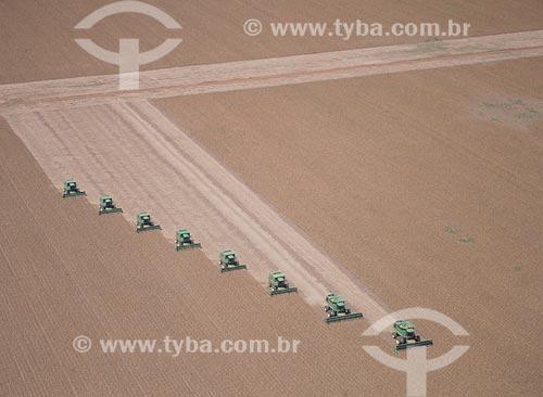 Assunto: Colheita de soja / Local: Distrito Baús - Costa Rica - Mato Grosso do Sul (MS) - Brasil / Data: 2011