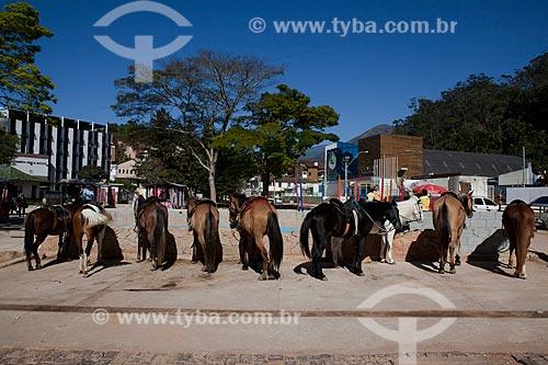 Assunto: Aluguel de cavalos para passeio na Praça dos Suspiros / Local: Nova Friburgo - Rio de Janeiro (RJ) - Brasil / Data: 06/2011