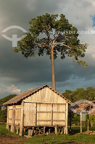 Assunto: Seringal Cachoeira - Casa de madeira com castanheira ao fundo / Local: Xapuri - Acre (AC) - Brasil / Data: 11/2009