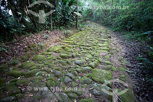 Assunto: Estrada do Ouro - Estrada de pedra feita por escravos para transportar ouro vindo de Minas Gerais para Parati / Local: Paraty - Rio de Janeiro (RJ) - Brasil / Data: 07/2011