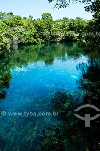 Assunto: Nascente do Rio Olho Dágua, afluente do Rio da Prata / Local: Jardim - Mato Grosso do Sul (MS) - Brasil / Data: 10/2010