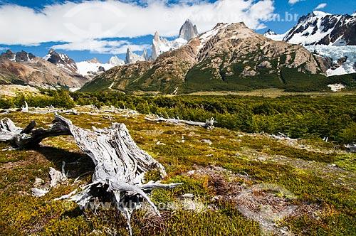 Assunto: Monte Fitz Roy visto da trilha do Glaciar Piedras Blancas / Local: El Chaltén - Argentina - América do Sul / Data: 02/2010