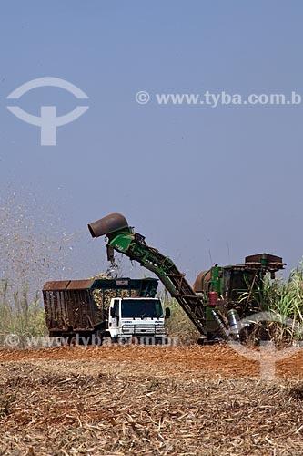 Assunto: Colheita Mecanizada de cana de açúcar para Usina de Cogeração (Açúcar, Etanol e Energia elétrica) da empresa Guarani  / Local: Olímpia - São Paulo (SP) - Brasil / Data: 09/2011