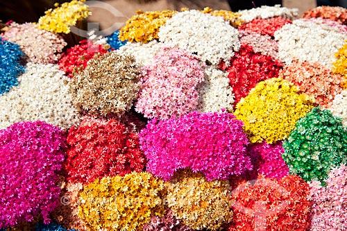 Assunto: Artesanato com flores do Cerrado / Local: Brasília - Distrito Federal (DF) - Brasil / Data: 11/2011