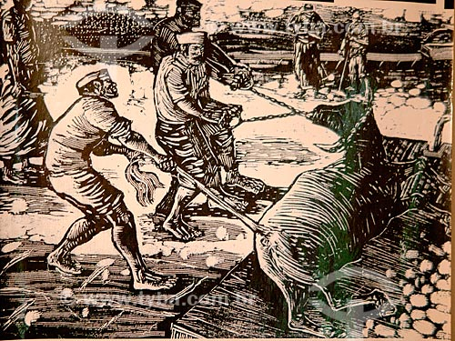 Assunto: Ilustração da matança de bois nas charqueadas / Local: Pelotas - Rio Grande do Sul (RS) - Brasil / Data: 02/2012