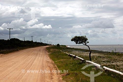 Assunto: Estrada de terra que liga Laranjal à colonia de pesca Z3 - Lagoa dos Patos / Local: Pelotas - Rio Grande do Sul (RS) - Brasil / Data: 02/2012