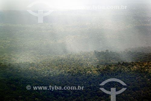Assunto: Chuva na Floresta Amazônica - Parque Nacional Montanhas do Tumucumaque / Local: Amapá (AP) - Brasil / Data: 04/2012