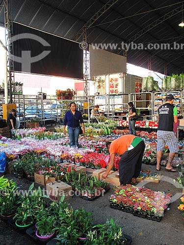 Assunto: Mercado De flores do Centro de Abastecimento da Guanabara (CADEG) / Local: Benfica - Rio de Janeiro (RJ) - Brasil / Data: 06/2012
