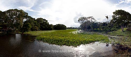 Assunto: Área de Proteção Ambiental (APA) do Rio Curiaú - Abastecido por canais naturais do Rio Amazonas / Local: Macapá - Amapá (AP) - Brasil / Data: 04/2012