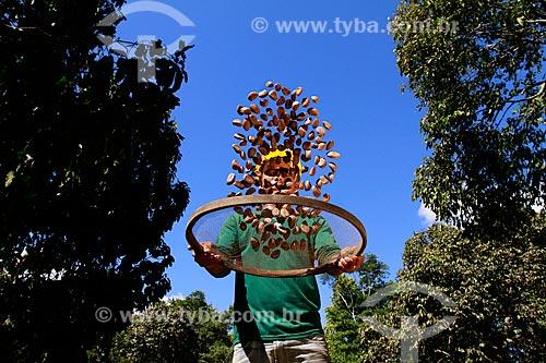 Assunto: Homem peneirando castanhas - Na fazenda Aruanã / Local: Itacoatiara - Amazonas (AM) - Brasil  / Data: 06/2012