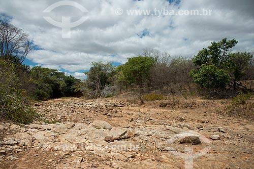 Assunto: Leito do riacho Grande seco no distrito de Bernardo Vieira / Local: Serra Talhada - Pernambuco (PE) - Brasil / Data: 08/2012