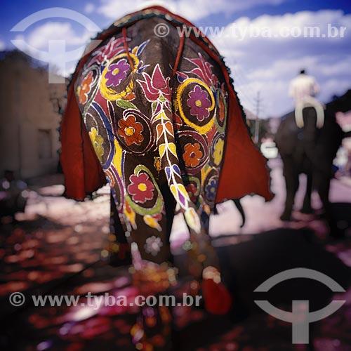 Assunto: Elefante enfeitado com desenhos de flores / Local: Índia - Ásia / Data: 04/2007