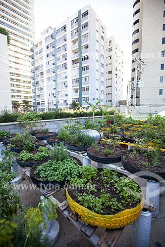Horta orgânica comunitária no sistema de teto verde em condomínio de Fortaleza  - Fortaleza - Ceará (CE) - Brasil