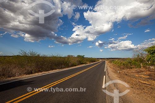 Assunto: Rodovia CE-060 trecho entre o Distrito Daniel de Queiroz e Quixadá / Local: Distrito Daniel de Queiroz - Quixadá - Ceará  (CE) - Brasil / Data: 11/2012