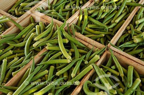 Assunto: Caixotes com quiabos / Local: Buritama - São Paulo (SP) - Brasil / Data: 10/2012