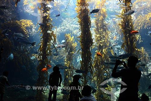 Assunto: Pessoas observando aquário no Sea World / Local: San Diego - Califórnia - Estados Unidos da América - EUA / Data: 09/2012