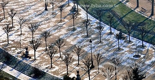 Assunto: Árvores na Avenida Joseph Bouvard - Campo de Marte / Local: Paris - França - Europa / Data: 02/2012