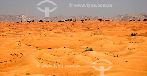Assunto: Deserto da região central dos Emirados Árabes - Emirados de Sharjah / Local: Emirados Árabes Unidos - Ásia / Data: 02/2010