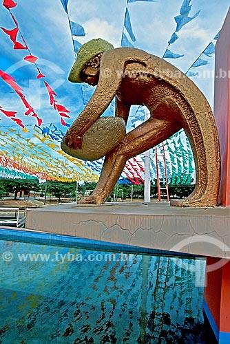 Assunto: Monumento ao Garimpeiro na Praça do Centro Cívico / Local: Boa Vista - Roraima (RR) - Brasil  / Data: 2003