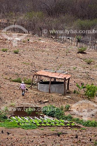 Assunto: Horta de subsistência em Pequena propriedade rural com um reservatório de água no fundo / Local: Canaã - Pernambuco (PE) - Brasil / Data: 01/2013