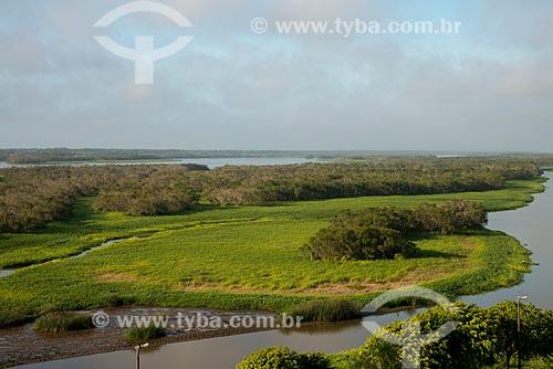 Assunto: Região de mangue formada pelo encontro do canal do Valo Grande com o Mar Pequeno / Local: Iguape - São Paulo (SP) - Brasil / Data: 11/2012