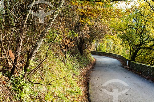 Assunto: Estrada com paisagem típica da região da Toscana / Local: Impruneta - Florença - Itália - Europa / Data: 12/2012