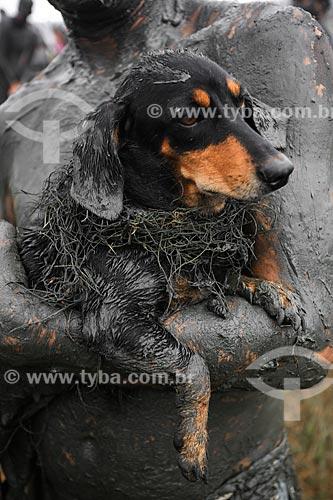 Assunto: Cachorro coberto de lama durante o desfile do Bloco da Lama / Local: Paraty - Rio de Janeiro (RJ) - Brasil / Data: 02/2013