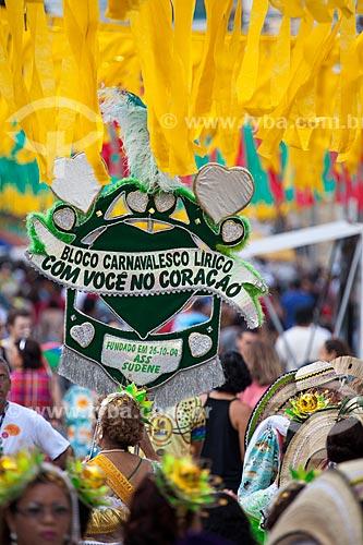 Assunto: Desfile do Bloco Carnavalesco Lírico Com Você no Coração na Rua Mariz e Barros durante o carnaval / Local: Recife - Pernambuco (PE) - Brasil / Data: 02/2013