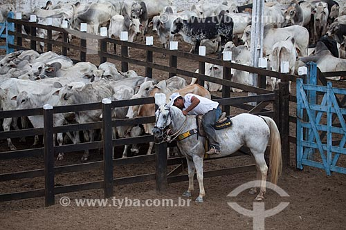 Assunto: Curral de gado no Parque Santa Terezinha / Local: Alagoa Grande - Paraíba (PB) - Brasil / Data: 02/2013