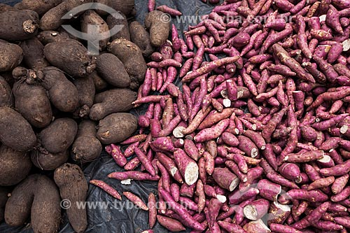 Assunto: Produtos agrícolas à venda na feira livre da cidade de Guarabira / Local: Guarabira - Paraíba (PB) - Brasil / Data: 02/2013