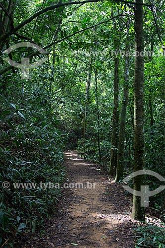 Assunto: Trilha para a Cachoeira das Almas na Floresta da Tijuca / Local: Alto da Boa Vista - Rio de Janeiro (RJ) - Brasil / Data: 04/2013