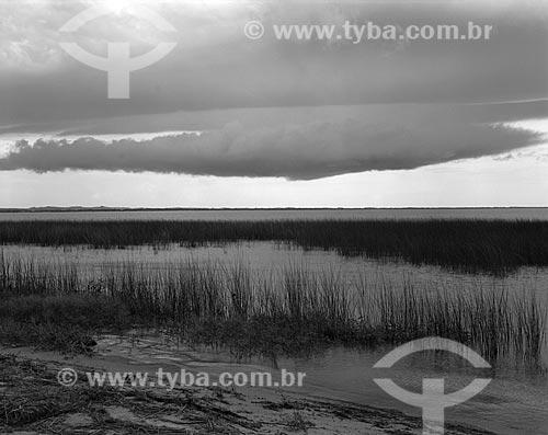 Assunto: Lagoa dos Patos / Local: São Lourenço do Sul - Rio Grande do Sul (RS) - Brasil / Data: 1987
