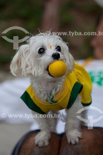 Assunto: Cachorro vestido com camiseta do Brasil antes do jogo entre Brasil x Espanha pela final da Copa das Confederações / Local: Maracanã - Rio de Janeiro (RJ) - Brasil / Data: 06/2013