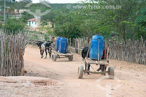 Índios da Etnia Kapinawá na aldeia ou comunidade Malhador transportando água em carro de boi no Parque Nacional do Catimbau - Imagem licenciada -  ACRÉSCIMO DE 100% SOBRE O VALOR DE TABELA  - Buíque - Pernambuco - Brasil