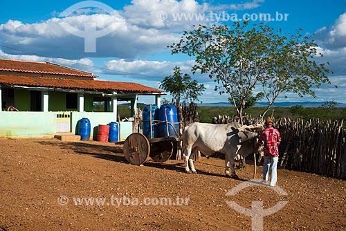 Casa do sertanejo José Francisco de Lima e carro de boi com tonéis de água em vilarejo na zona rural  - Custódia - Pernambuco - Brasil