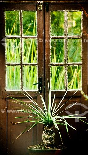 Assunto: Vaso de planta no Jardim Botânico do Rio de Janeiro / Local: Jardim Botânico - Rio de Janeiro (RJ) - Brasil / Data: 07/2011