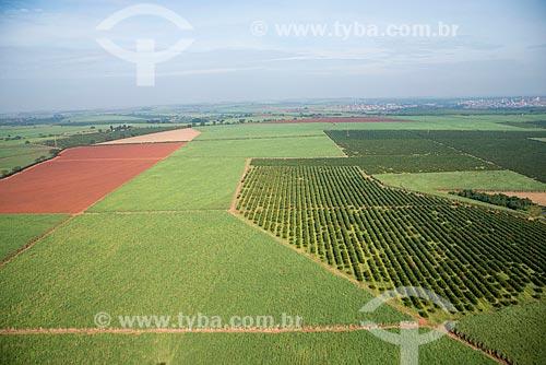 Assunto: Vista aérea de plantação de cana-de-açúcar e laranja / Local: Morro Agudo - São Paulo (SP) - Brasil / Data: 05/2013