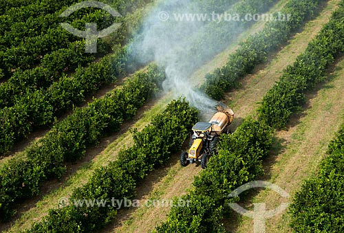 Assunto: Pulverização de pesticida em plantação de laranja / Local: Bebedouro - São Paulo (SP) - Brasil / Data: 05/2013