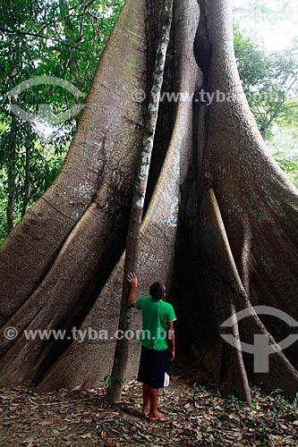 Assunto: Homem observa arvore Samaúma (Ceiba pentandra) localizada na beira do Rio Ariaú / Local: Amazonas (AM) - Brasil / Data: 09/2013