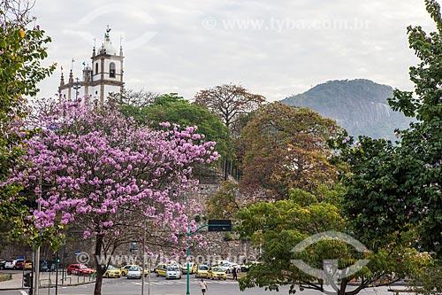 Assunto: Ipê-Rosa (Tabebuia heptaphylla) florido com a Igreja de Nossa Senhora da Glória do Outeiro (1739) ao fundo / Local: Glória - Rio de Janeiro (RJ) - Brasil / Data: 08/2013