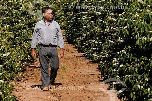 Produtor rural em meio à plantação de café durante a florada  - Neves Paulista - São Paulo - Brasil