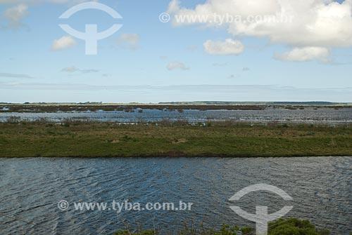 Assunto: Banhado do Taim - Estação Ecológica do Taim - áreas alagadas permanente ou temporariamente / Local: Rio Grande do Sul (RS) - Brasil / Data: 09/2013